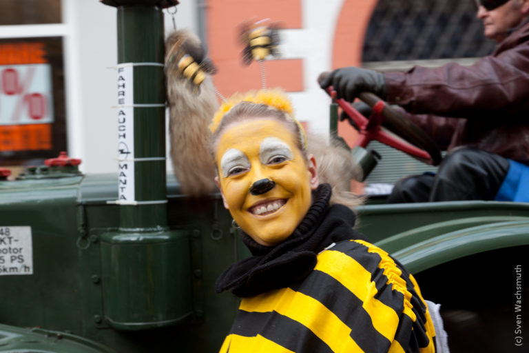 Karneval in Erfurt 2016
